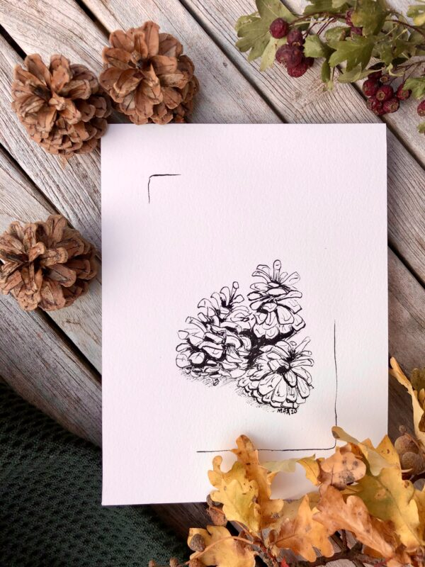 Pine cones Pigments by Marianne